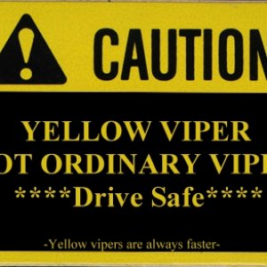 Caution Yellow Viper!